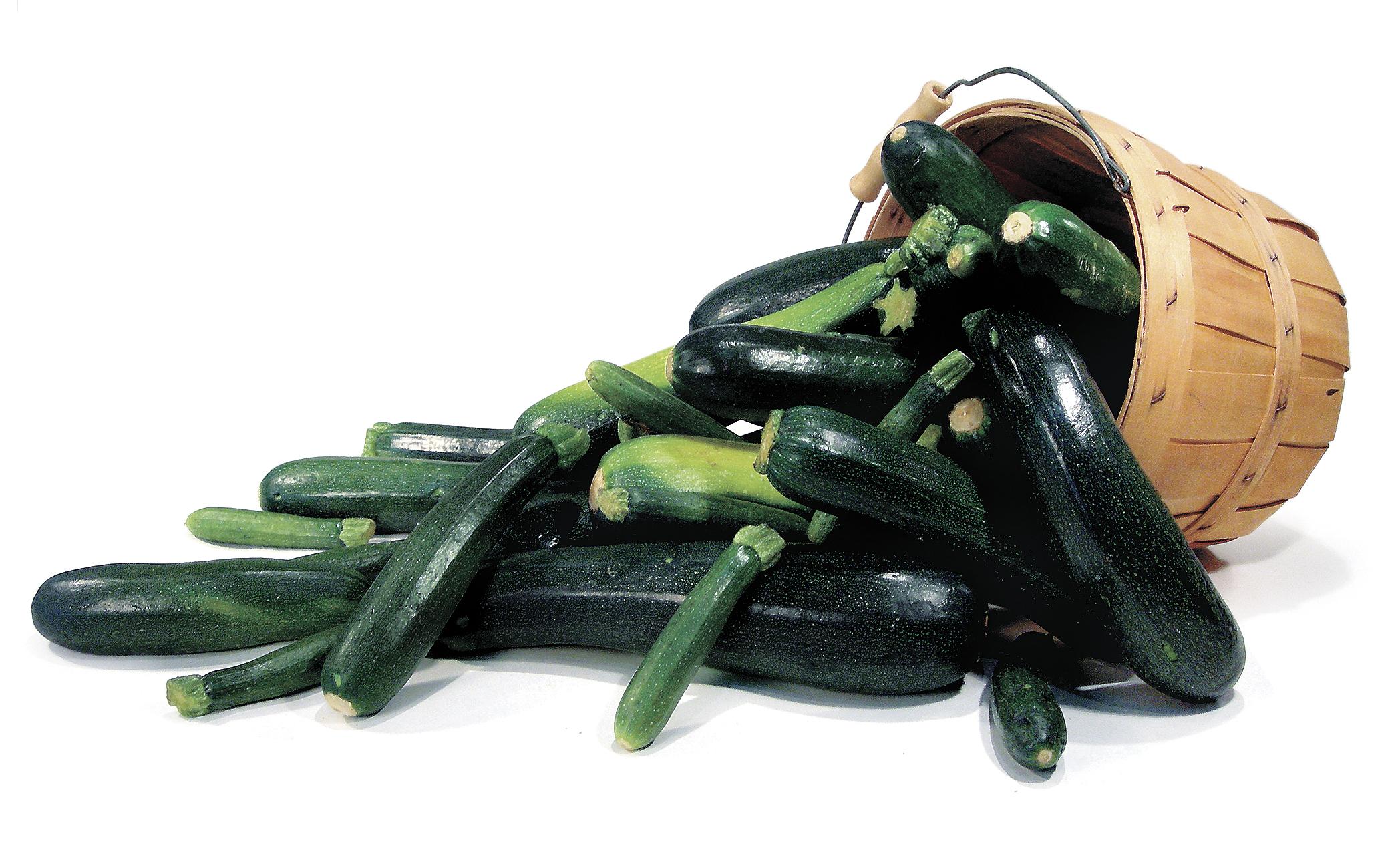 Zucchini photo for gThankYou!