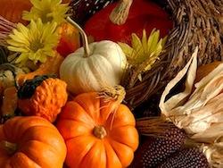 gThankYou - Thanksgiving Gourds