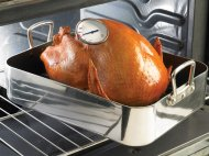 gThankYou! Turkey with Thermometer
