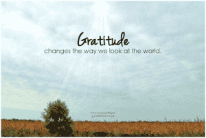 Workplace gratitude: destress one day at a time!