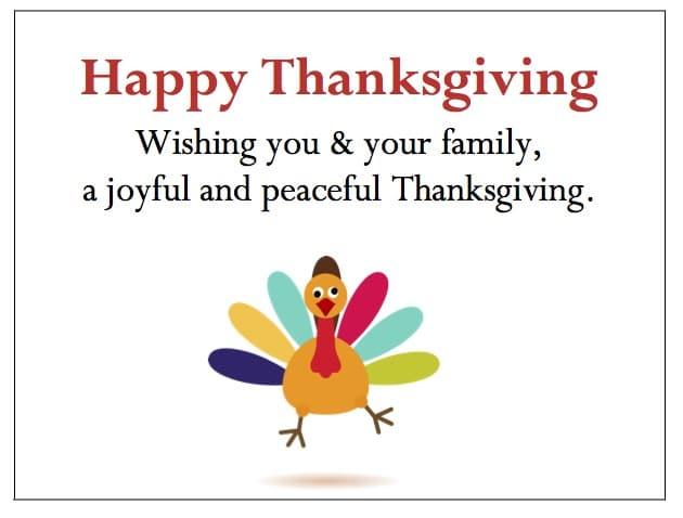 Joyful Turkey