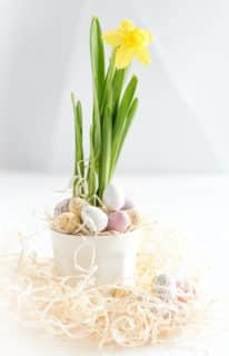 Celebrate spring in the office with flowers and chocolate eggs